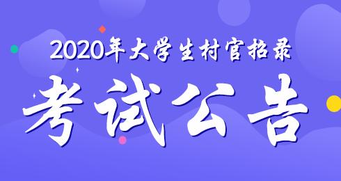 2020大学生村官招录考试公告